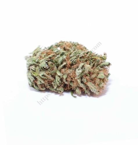 Canna Comforts Raw Hemp CBD Flower Lifter Strain Review