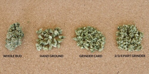 cannabis grounds