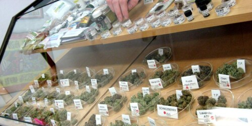 What it's Like to Run a Business in the Legal Cannabis Space 1