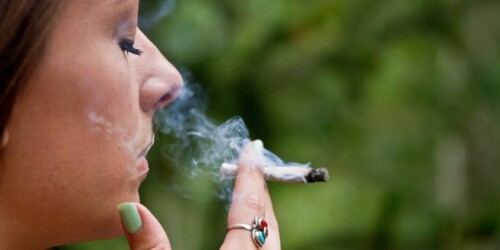 Is Smoking Cannabis Safe for Your Respiratory System? 1
