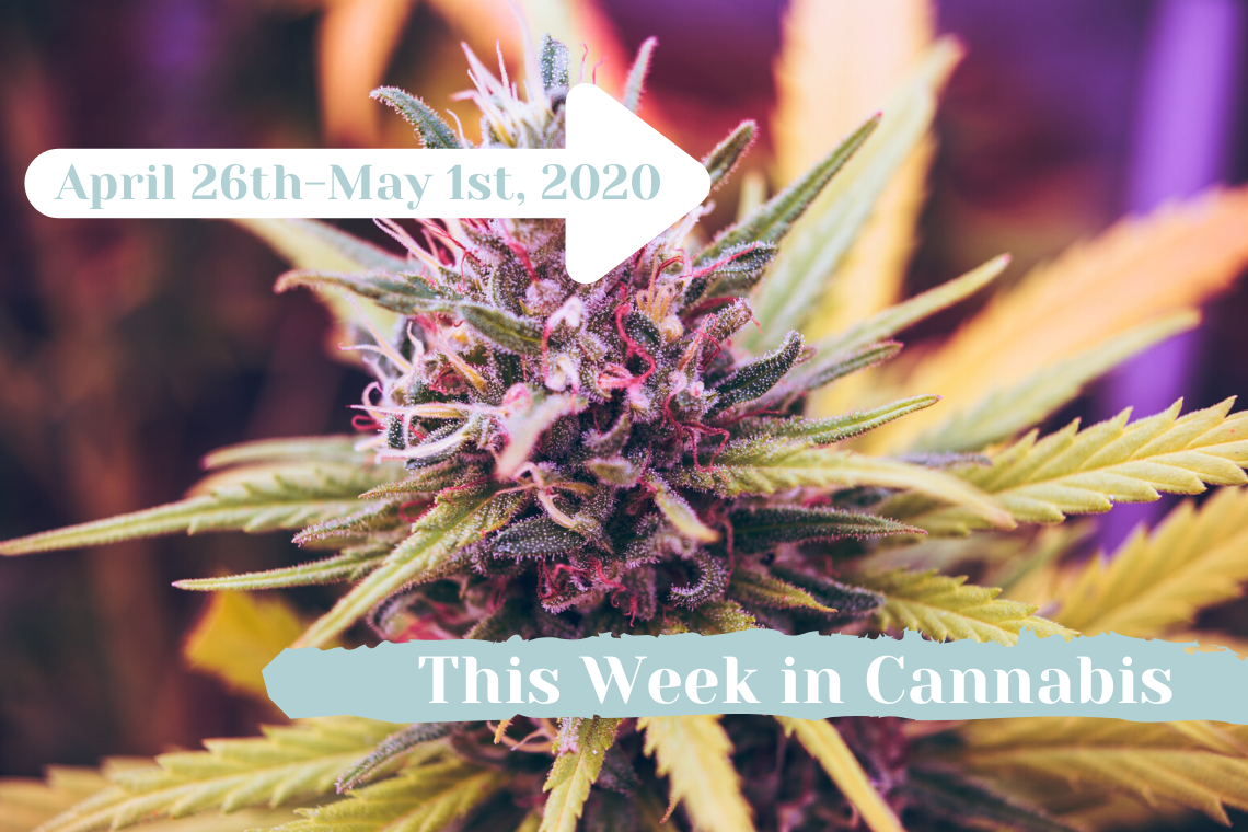 this week in cannabis